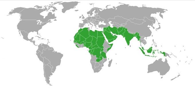 Países donde se acepta la poligamia masculina. Fuente: Wikimedia Commons.